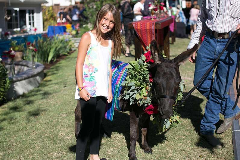 Fantasy Donkey at Fiesta Wedding
